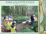 park gigantycznych owad w1