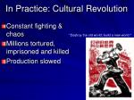 in practice cultural revolution
