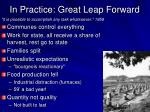 in practice great leap forward