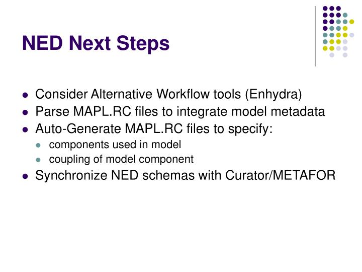 NED Next Steps