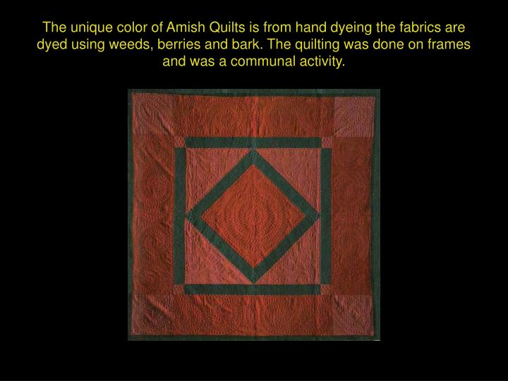 The unique color of Amish Quilts is from hand dyeing the fabrics are dyed using weeds, berries and bark. The quilting was done on frames and was a communal activity.