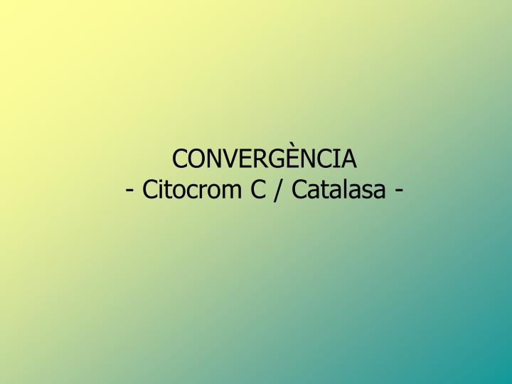 CONVERGÈNCIA