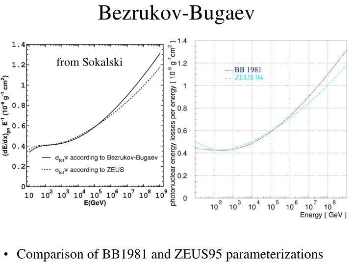 Bezrukov-Bugaev