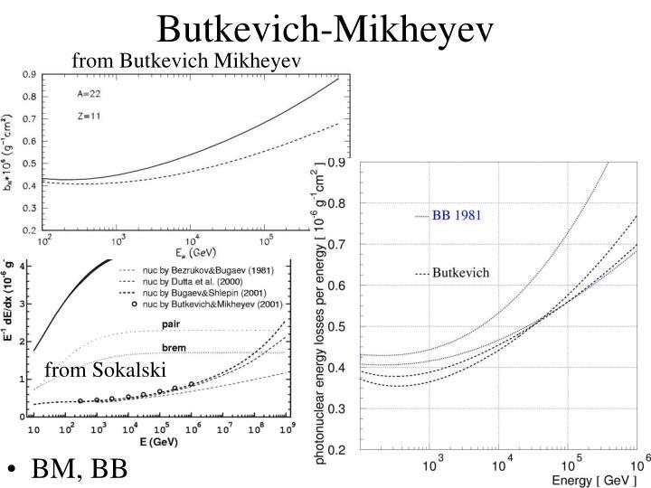 Butkevich-Mikheyev