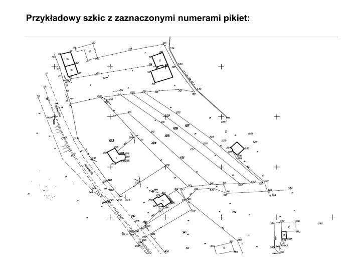 Przykładowy szkic z zaznaczonymi numerami pikiet: