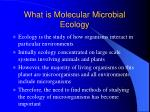 what is molecular microbial ecology