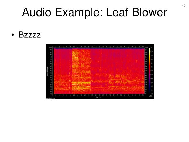 Audio Example: Leaf Blower