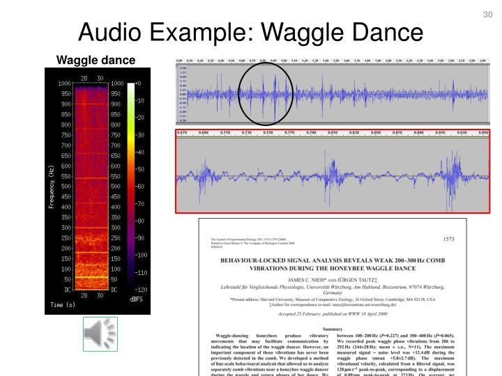 Audio Example: Waggle Dance