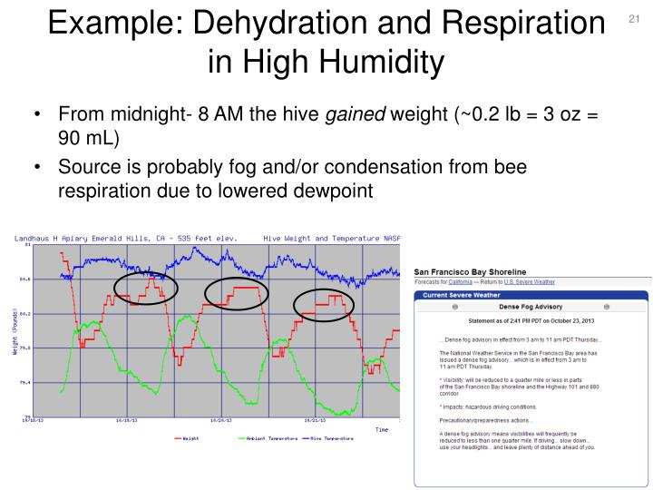 Example: Dehydration and Respiration in High Humidity