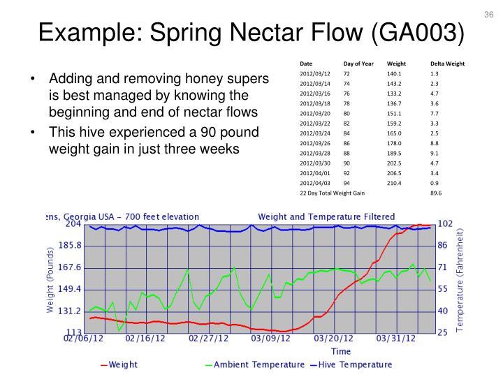 Example: Spring Nectar Flow (GA003)