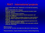 fkkt international projects