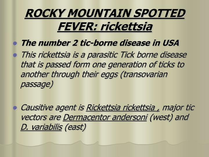 ROCKY MOUNTAIN SPOTTED FEVER: rickettsia