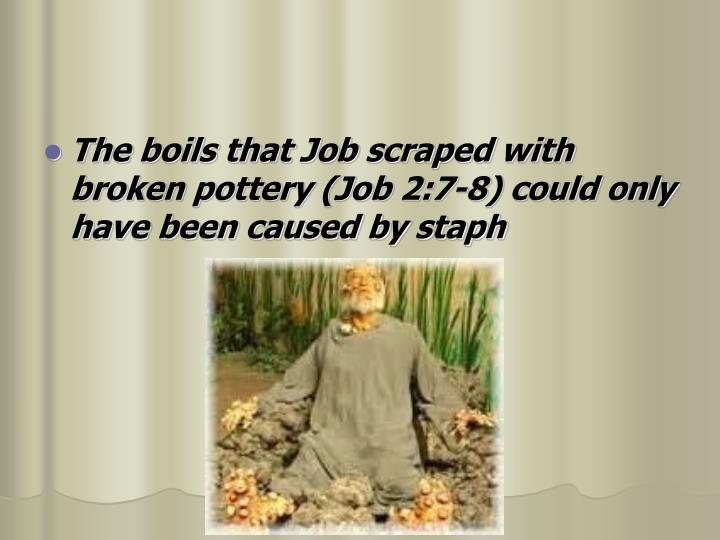 The boils that Job scraped with broken pottery (Job 2:7-8) could only have been caused by staph