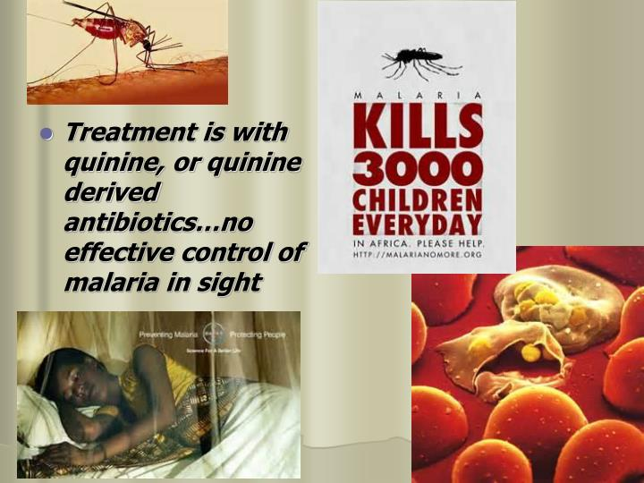 Treatment is with quinine, or quinine derived antibiotics…no effective control of malaria in sight