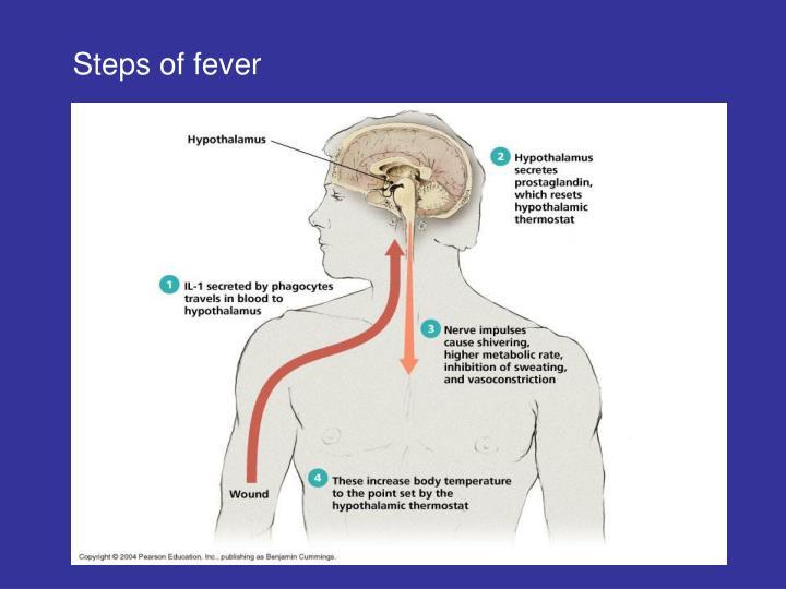 Steps of fever