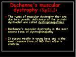 duchenne s muscular dystrophy xp21 2