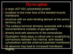 dystrophin1