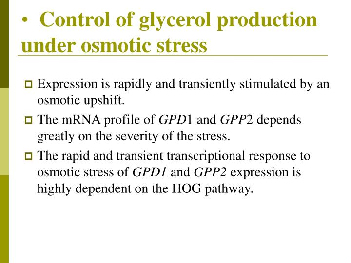 Control of glycerol production under osmotic stress