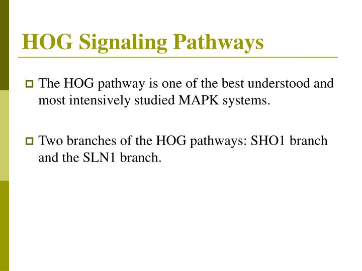 HOG Signaling Pathways