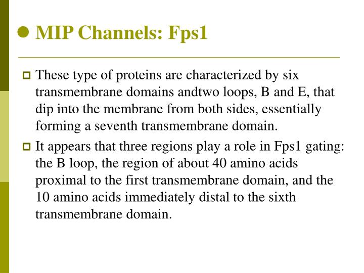 MIP Channels: Fps1