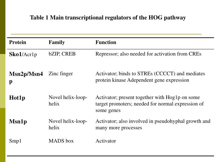 Table 1 Main transcriptional regulators of the HOG pathway