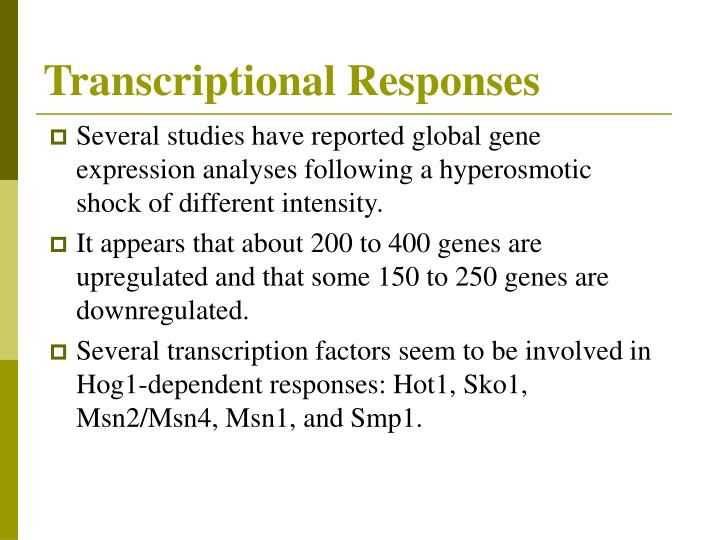 Transcriptional Responses