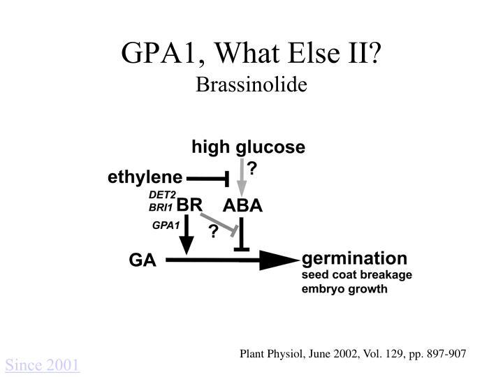 GPA1, What Else II?
