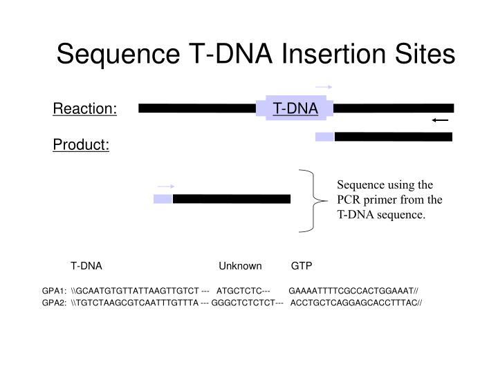 T-DNA