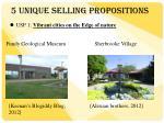 5 u nique selling propositions