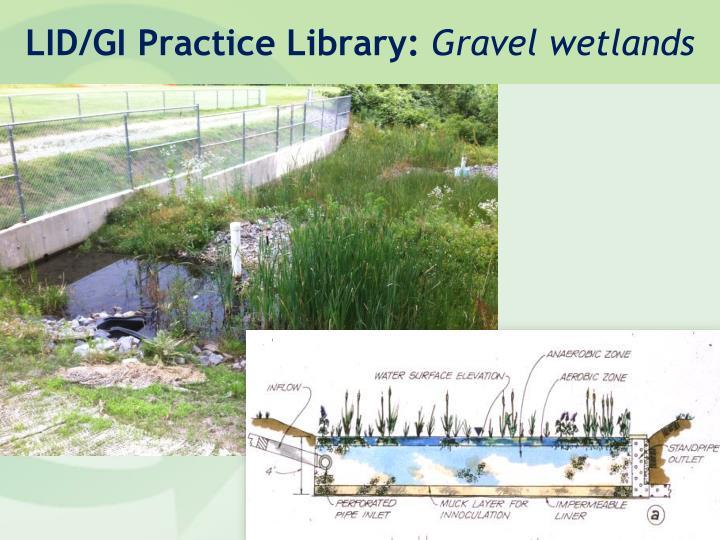 LID/GI Practice Library: