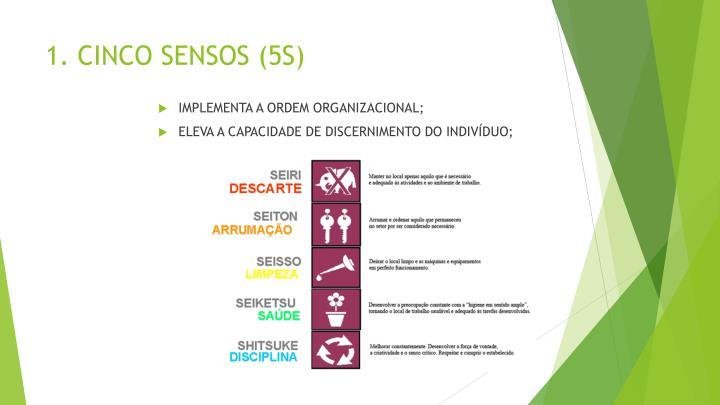 1. CINCO SENSOS (5S)