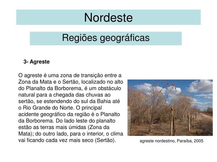 Nordeste2