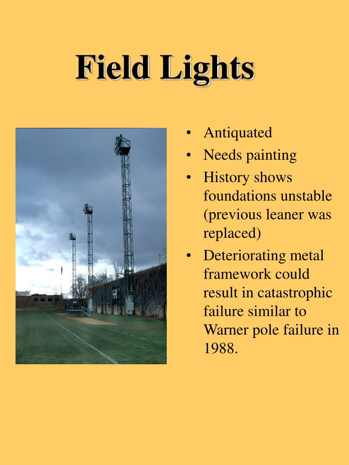 Field Lights