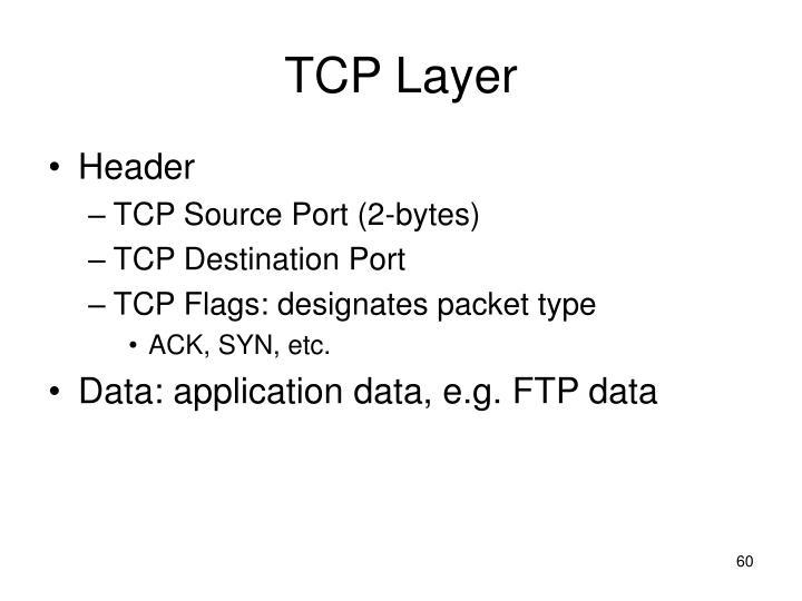 TCP Layer