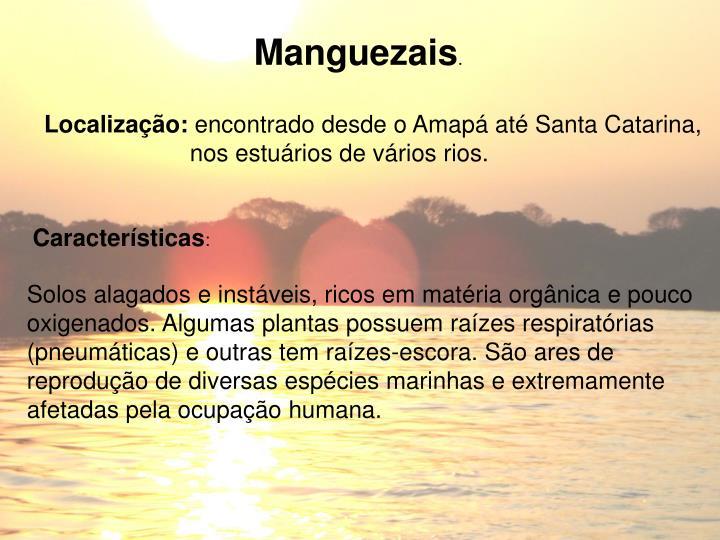 Manguezais