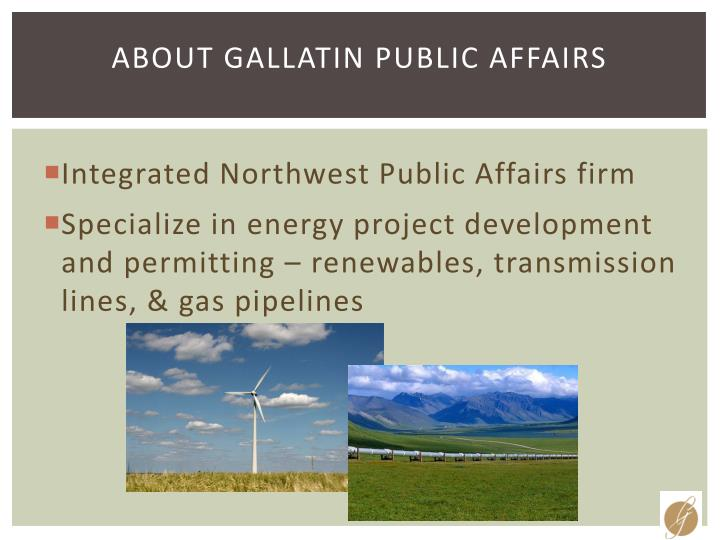 About gallatin public affairs