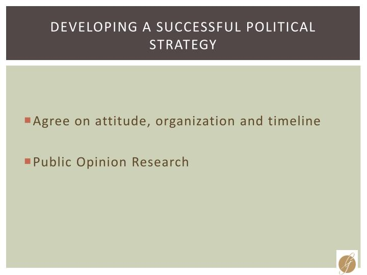 Developing a Successful Political Strategy