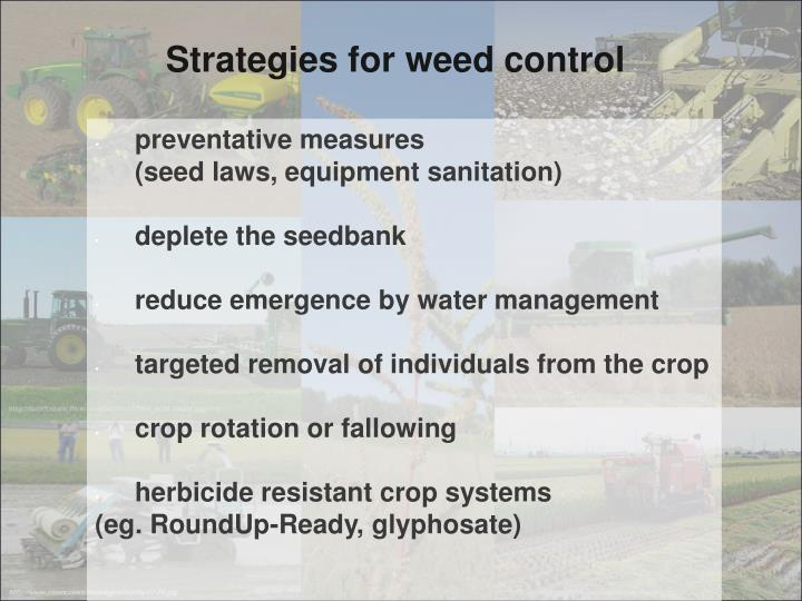Strategies for weed control