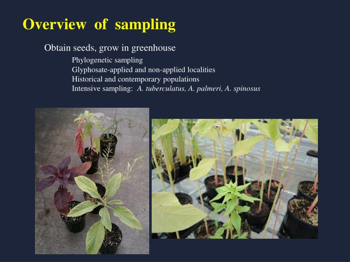Overview  of  sampling