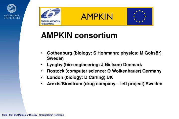 AMPKIN