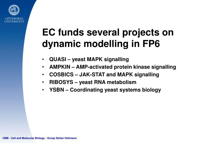 EC funds several projects on dynamic modelling in FP6