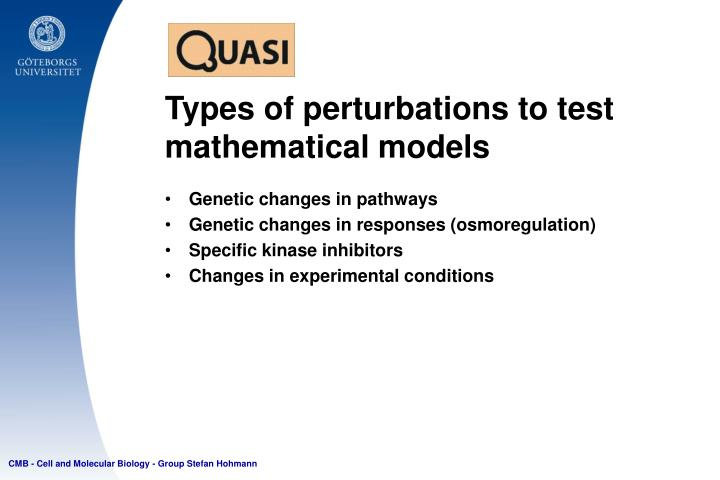 Types of perturbations to test mathematical models