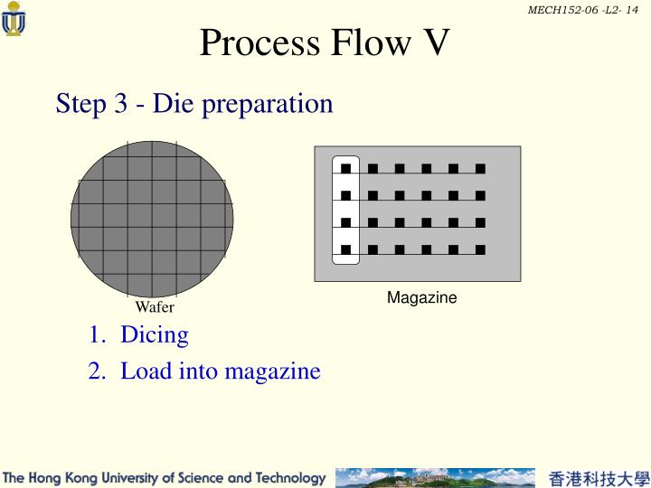 Process Flow V