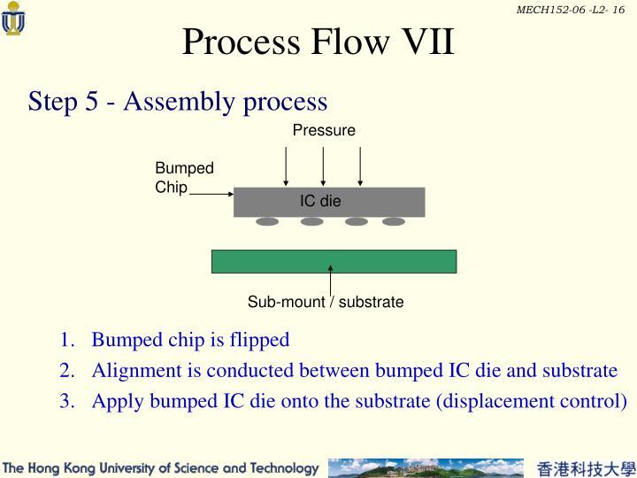 Process Flow VII