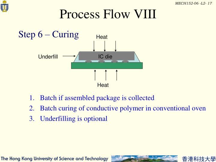 Process Flow VIII