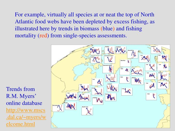 For example, virtually all species at or neat the top of North Atlantic food webs have been depleted...
