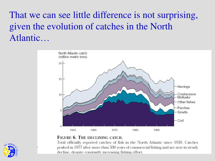 That we can see little difference is not surprising, given the evolution of catches in the North Atlantic…
