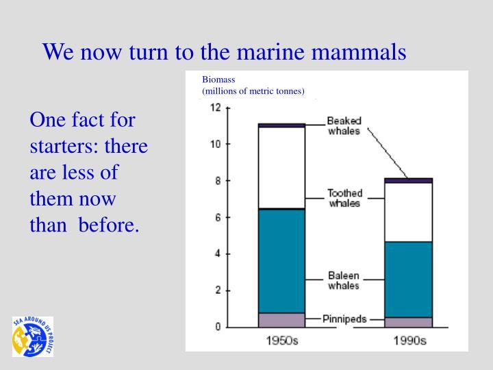 We now turn to the marine mammals