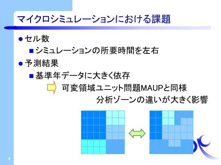 マイクロシミュレーションにおける課題