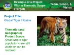 example of a project with a thematic scope target